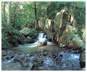 http://petrouschka.cowblog.fr/images/wwwcorboneu.jpg